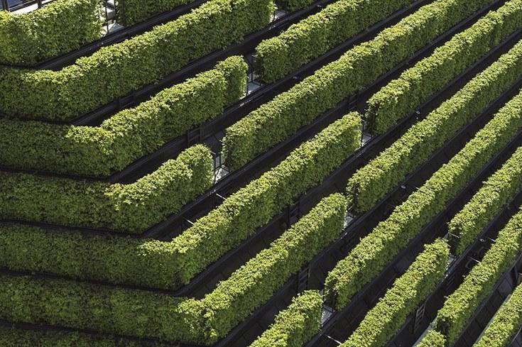 Kö-Bogen II - Europas größte Grünfassade